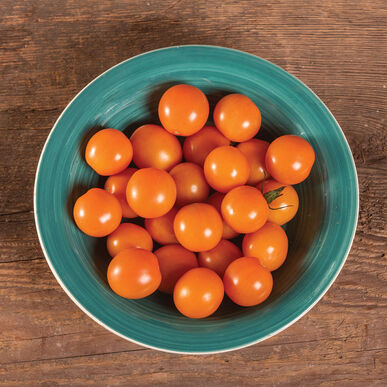 Citrine Cherry Tomatoes