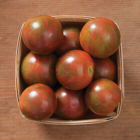 Purple Bumble Bee Specialty Tomatoes
