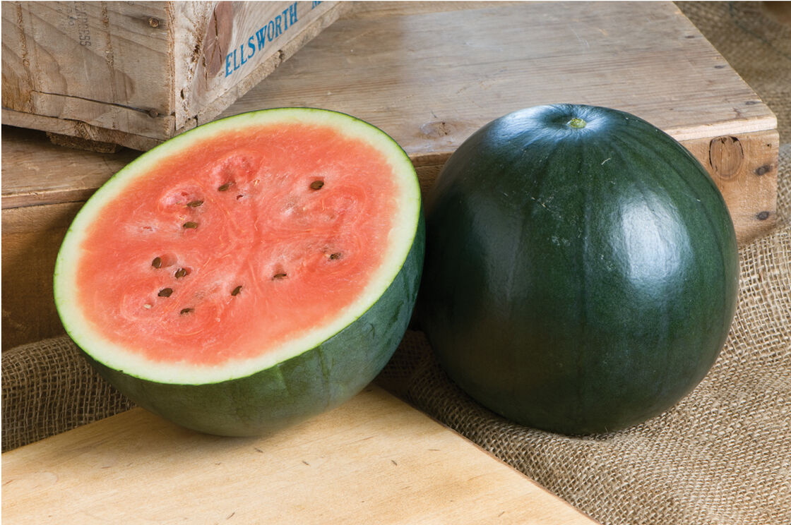 Sugar Baby Watermelon Seeds Johnny S Selected Seeds