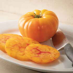GinFiz Specialty Tomatoes