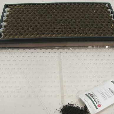 Paperpot Seeder – 3.5 mm Drop Seeders