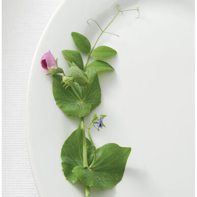 Dwarf Grey Sugar Greens and Garnish Peas