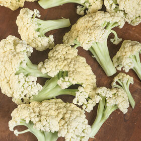Song TJS-65 Green Stem Cauliflower