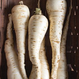 How to Grow Pelleted Parsnip