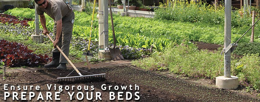 Ensure Vigorous Growth - Prepare Your Beds