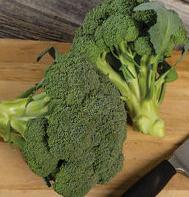 Monty Broccoli