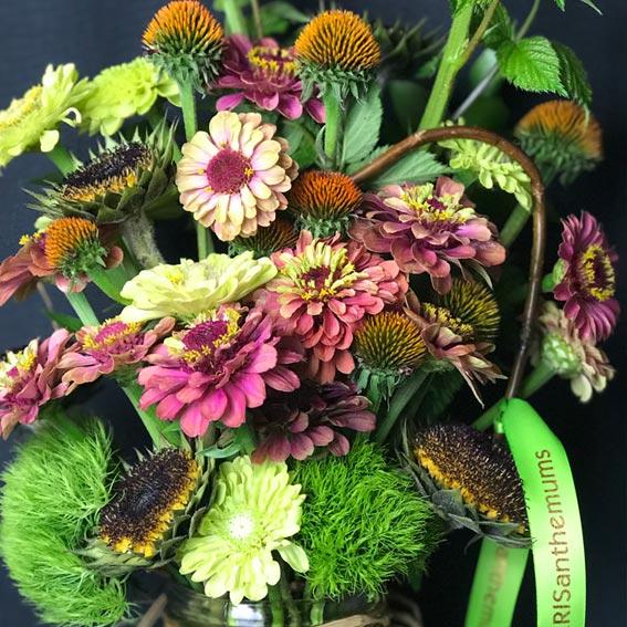 Kris Bennett, KRISanthemums