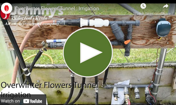 View Our Overwinter Flower Tunnel Irrigation Video