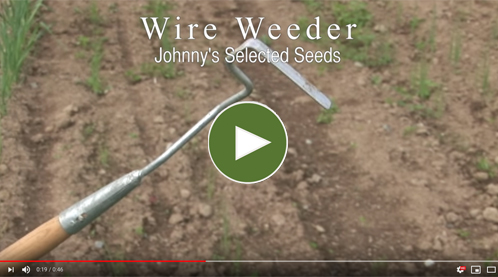Long- & Short-Handled Wire Weeder Video