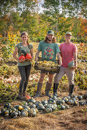 Harvesting the Winter Squash Trials at Johnny's Selected Seeds