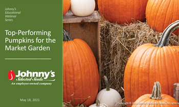 Top-Performing Pumpkins for the Market Garden Recap/Slideshow • 16-pp PDF