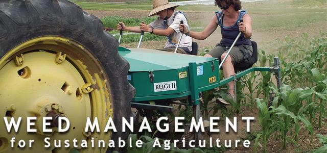 Weed Management Basics
