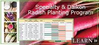 Specialty & Daikon Radish Planting Program