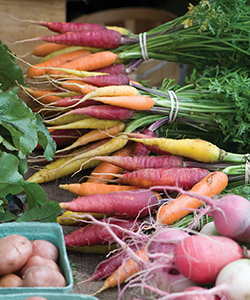 The perfect carrot bunch is within reach