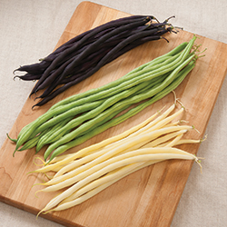 Johnny's Round-Pod Pole Bean Favorites
