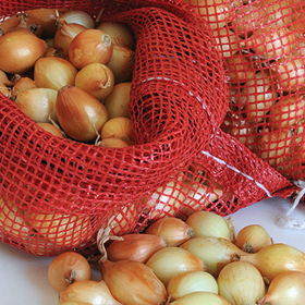 How to Grow Onions from Sets