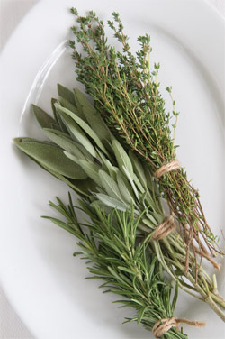 Culinary herbs are always in demand
