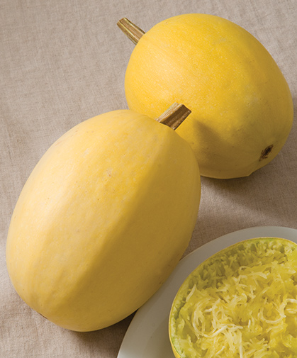 Spaghetti squash; the fruits can be kept in storage, but are best eaten within three months of harvesting.