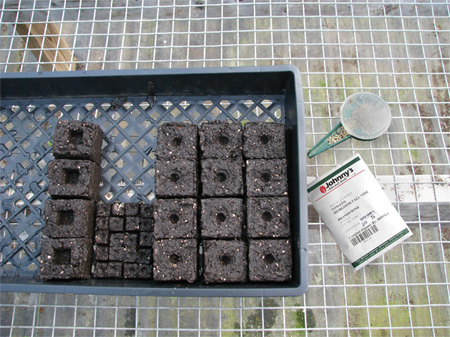 Soil blocks of varying sizes will accommodate a range of crops at different stages of growth.