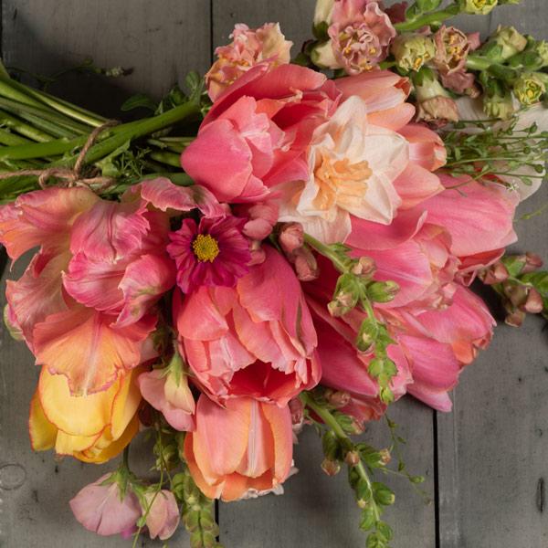 Shop CORAL Flowers