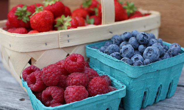 Here are 5 great reasons to grow your own fruit