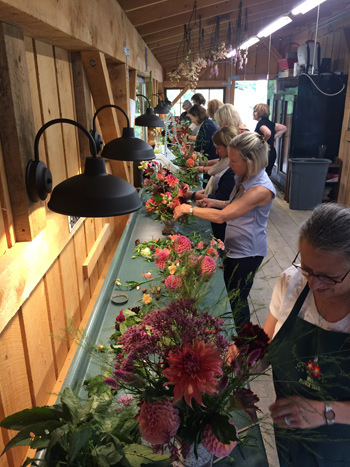 Museum of Fine Arts Boston's floral designers at Maple Flower Farm's Dahlia Workshop