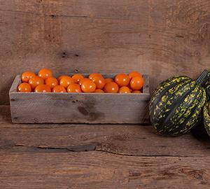 Citrine: orange, crack-resistant cherry tomato