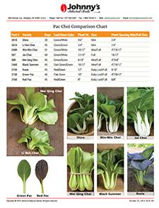 Pac Choi Comparison Chart