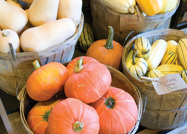Why Some Winter Squash Tastes Better