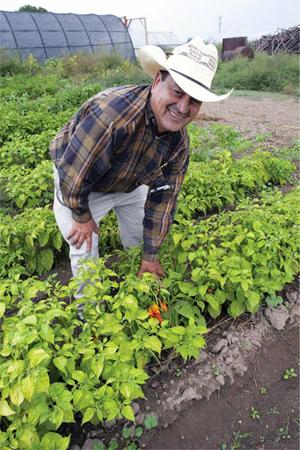 Hilario Alvarez, Alvarez Organic Farms
