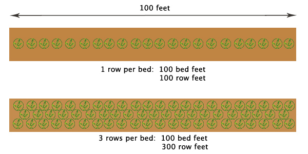 A graphic depicting the definition of and distinction between bed feet vs. row feet.