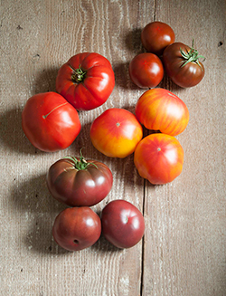 French Heritage Collection - Les tomates si belle