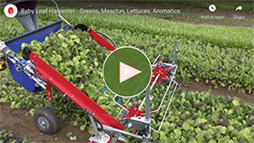 Watch the Baby Leaf Greens Harvester in Action