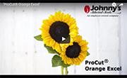 ProCut Orange Excel Sunflower