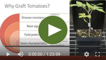 View Our Full Top-Grafting Webinar Video