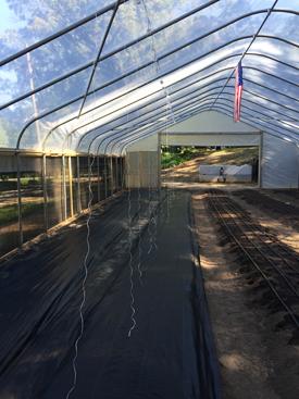 Raised beds in Jeff Scott's high tunnel, Vino, Alabama.