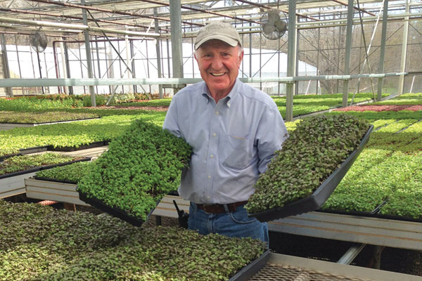 Sal Gilbertie, Gilbertie's Herbs, Garden Center, & Petite Edibles