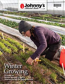 Printable Winter Growing Guide