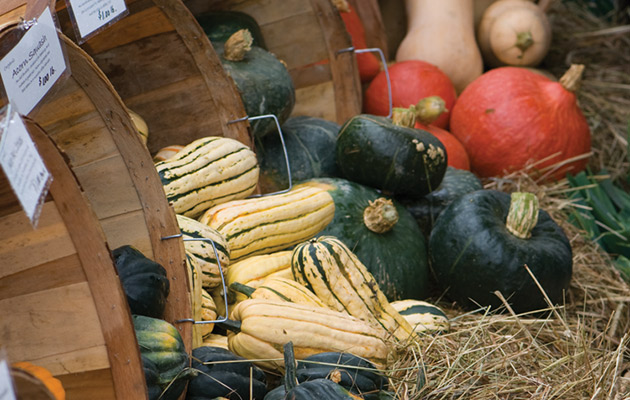 Winter Squash: Peak Flavor Chart