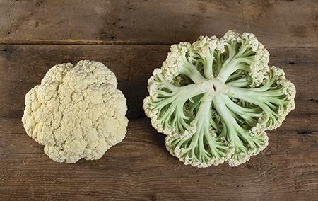 Heat-tolerant cauliflower - Song TJS-65