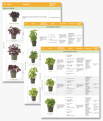 Use our comparison chart to choose basil varieties for container/hydroponic production.