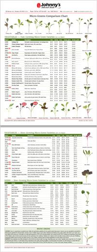 Microgreens Comparison Chart