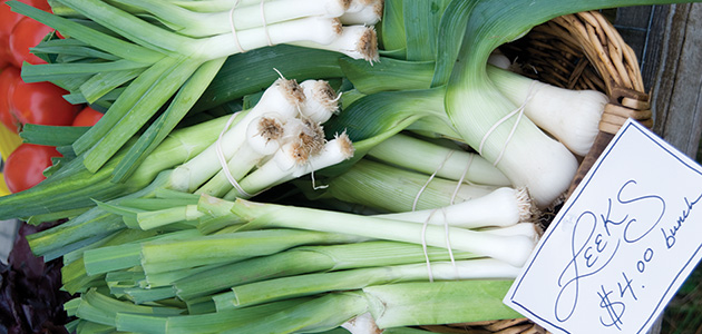 Learn to succession-harvest leeks across the seasons.