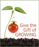 Give the Gift of Growing