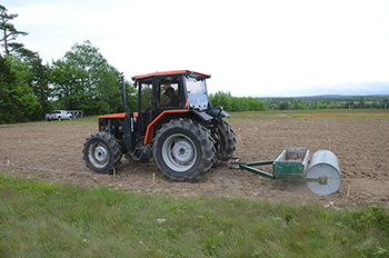 Soil compacting, post sowing