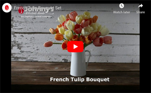 French Bouquet Tulip Set