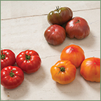 Modern Heirloom-like Varieties