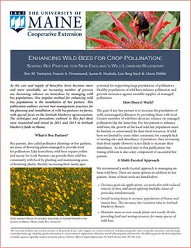 Enhancing Wild Bee Populations