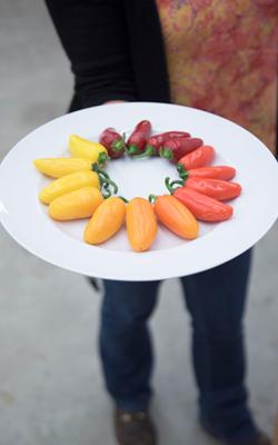 Pepper Platter