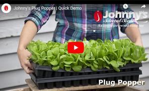 Plug Popper Demo